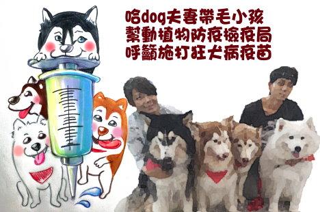 防範狂犬病疫情擴散 哈dog夫妻帶毛小孩籲施打疫苗
